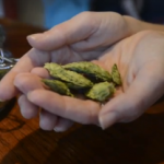Beer Guy video: Asheville Pizza allows drinkers to dunk your own hops